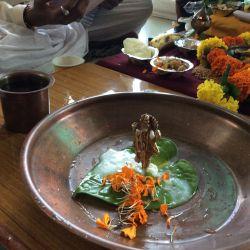 Papayacare festival celebration 16